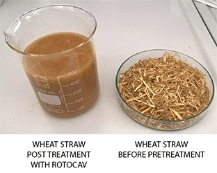 Pretreatment of biomass with hydrodynamic cavitator ROTOCAV for biogas production