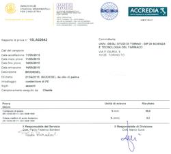Analisi biodiesel da olio di palma prodotto con ROTOCAV - Cavitatore idrodinamico