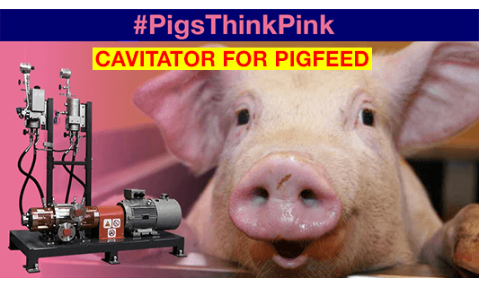 ROTOCAV for pigfeed - Hydrodynamic cavitation for more digestible pigfeed
