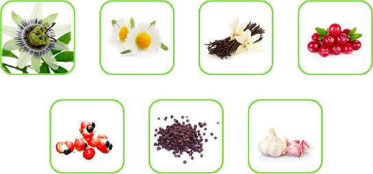 Alcuni esempi di matrici vegetali processabili con il cavitatore idrodinamico ROTOCAV nel settore delle estrazioni e dell'industria alimentare